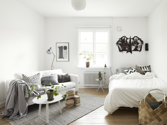 Tiny One Room Apartment Uses Storage Piece As Wall