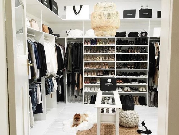... Walk In Closet With Dog