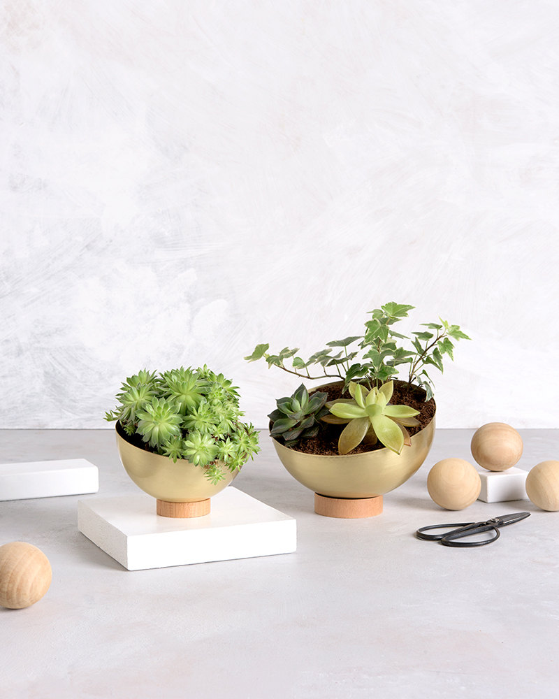 succulent-planter-brass-planter-pot-modern-planter-new-home-gift-indoor-garden-indoor-planter-housewarming-gift