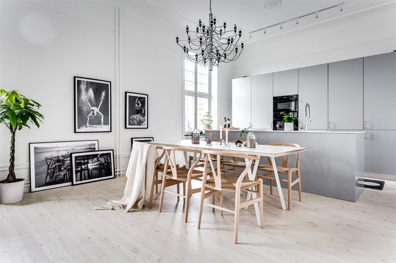 open space scandinavian apartment