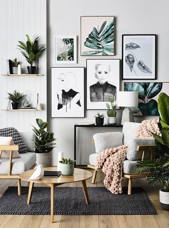 plants home decor 1