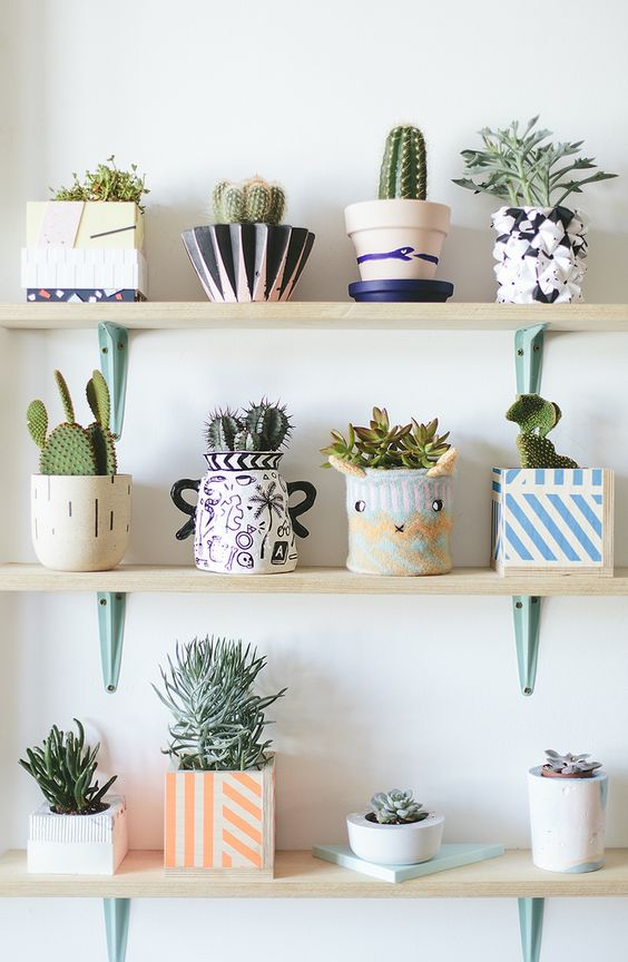 10 Plants that will bring a pozitive vibe to your home