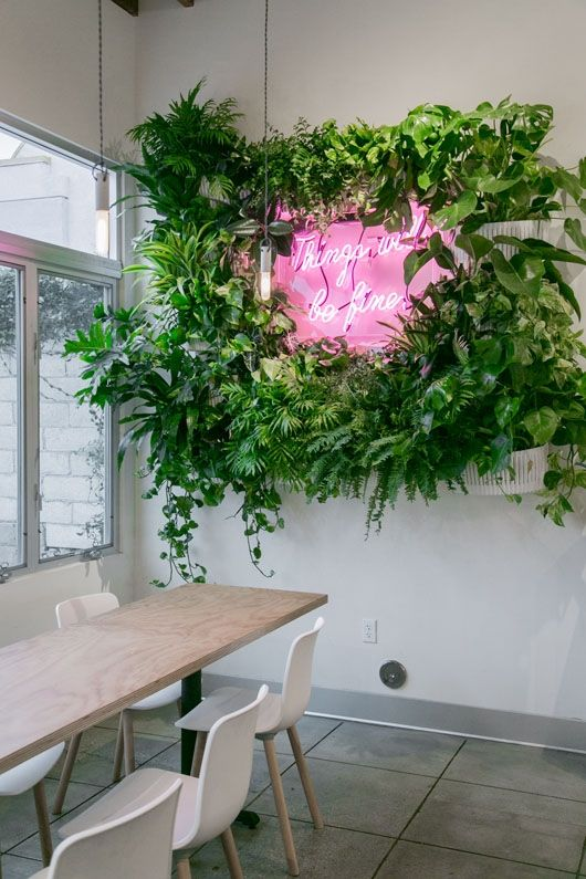 Modern living walls – 5 Reasons you will love this this nature inspired trend this season